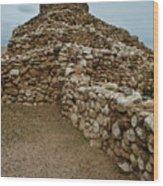 Tuzigoot Ruins No. 1 Wood Print