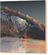 Tw 90 Wood Print