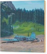 Twa Mountaintop Cabin Wood Print