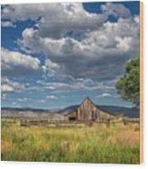 Twaddle-pedroli Ranch Wood Print