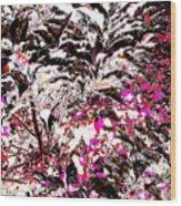 Twali Pashan Wood Print by Eikoni Images