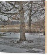 Twelve Oaks Wood Print