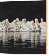 Twelve White Pelicans On A Dark Background. Wood Print
