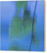 Twig And Leaf - D009634a Wood Print