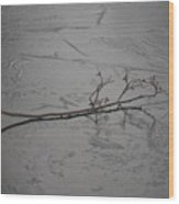 Twig On A Frozen Lake Wood Print
