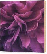 Twilight Breeze Wood Print