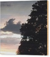 Twilight Landscape Wood Print
