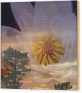 Twilight Lily Wood Print