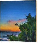 Twilight Mangrove Wood Print