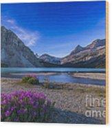 Twilight On Bow Lake, Banff National Wood Print