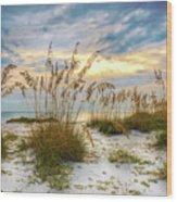 Twilight Sea Oats Wood Print