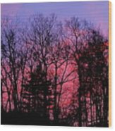 Twilight Trees Wood Print
