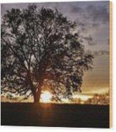 Twilight's Embrace Wood Print