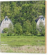 Twin Barns In Spring Wood Print