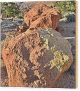 Twin Boulders Wood Print