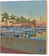Twin Dolphin Marina Wood Print
