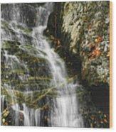 Twin Falls - Nc Wood Print