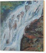 Twin Falls Cascade Wood Print