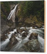 Twin Falls Landscape Wood Print