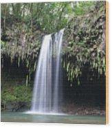 Twin Falls Maui Hawaii Wood Print