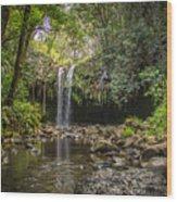 Twin Falls, Maui Wood Print