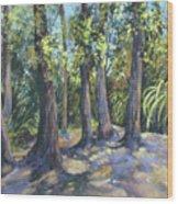 Twin Falls Sentinals Wood Print