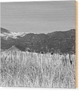 Twin Peaks Rustic Fence Wood Print