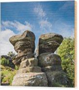 Twin Rocks At Brimham Wood Print