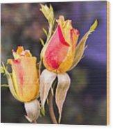 Twin Roses Of Love Wood Print