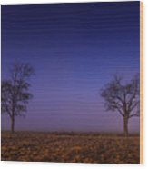 Twin Trees In The Mississippi Delta Wood Print