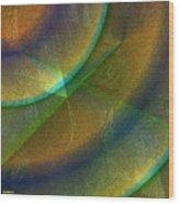 Twist 081117 Wood Print