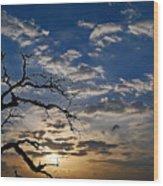 Twisted Sunset Wood Print