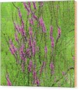 Twisty Flowers Wood Print