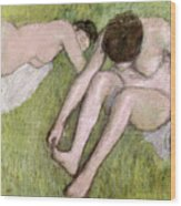 Two Bathers On The Grass Wood Print