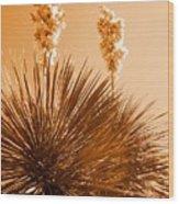 Two Blossoms IIi Wood Print