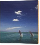 Two Bottlenose Dolphins Dancing Across Wood Print