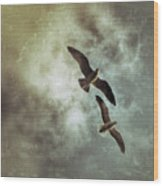 Two By Two They Flew Wood Print