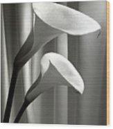 Two Callas Wood Print