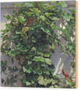 Two Cardinals On The Vine Tree Wood Print