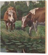 Two Cows By A Pond Wood Print