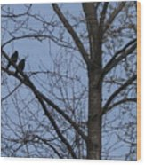Two Crows Wood Print