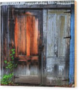 Two Doors On A Woodshed Wood Print