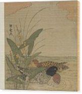 Two Ducks Swimming Wood Print
