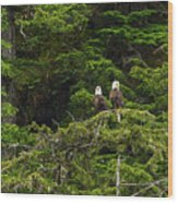 Two Eagles Perched Painterly Wood Print