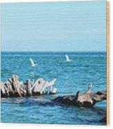 Two Egrets Wood Print