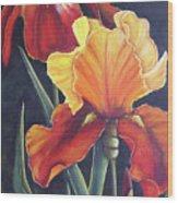 Two Fiery Iris Wood Print