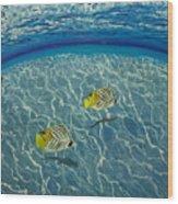 Two Fish Wood Print