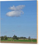 Two Fluffs Wood Print by Jan Amiss Photography