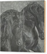 Two Friesian Stallions Wood Print