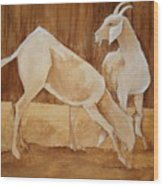 Two Goats In Sepia Wood Print